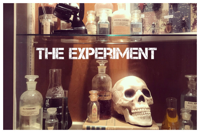 The Experiment Display poster